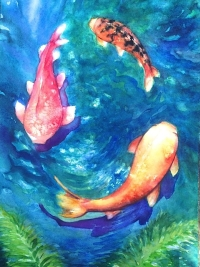 Mark's Koi Fish