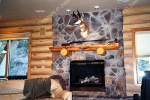interiors_logs-mural.jpg